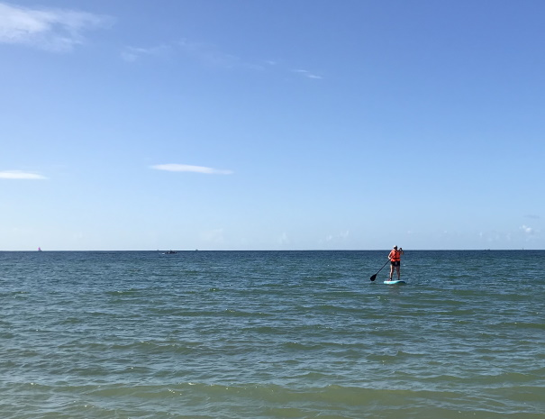 paddleboard in the sea