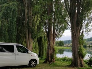 campervan and weeping willows