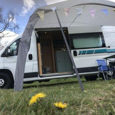 Campervan dandelion